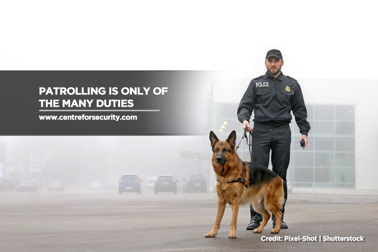 Patrolling is only of the many duties
